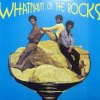 WHATNAUTS ON THE ROCKS
