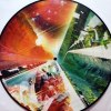 "VALLEY OF PARADISE REMIXES 12"" PICTURE DISC"