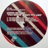 YOU KNOW WHAT ITS LIKE - GERD REMIXES