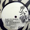 THE MAMMOTH EP
