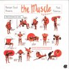 THE MUSCLE (中古盤)