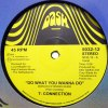 DO WHAT YOU WANNA DO (MOPLEN REMIXES) (中古盤)