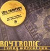 Living Without You (The Remixes) (中古盤)