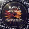 IF A DIGITAL RELEASE FALLS IN THE WOODS EP (中古盤)