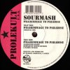 PILGRIMMAGE TO PARADISE (中古盤)
