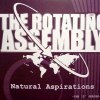 "NATURAL ASPIRATIONS -THE 12"" SERIES (中古盤)"