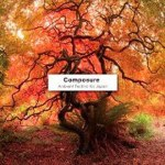 COMPOSURE AMBIENT TECHNO FOR JAPAN