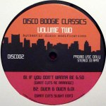 DISCO BOOGIE CLASSICS VOL 2  - AUTHENTIC DISCO MODIFICATIONS