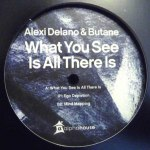 WHAT YOU SEE IS ALL THERE IS EP