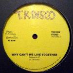 WHY CAN'T WE LIVE TOGETHER (LATE NITE TUFF GUY REWORK)