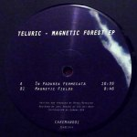 MAGNETIC FOREST EP