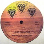 """WAITING FOR YOUR LOVE (SINGLE-SIDED 12"""" VERSION)"""