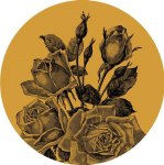 GONE IN ROSES EP