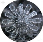 FROST PLATES 001