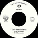 WHAT FREEDOM MEANS / TENDERLY