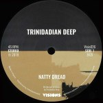 NATTY DREAD/ELECTRIC BOOGIE