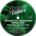 I'M GONNA LOVE YOU / SPECIAL LOVE (MICKY MORE & ANDY TEE 12 INCH REMIXES)